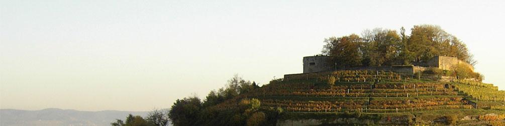 Schwäbischer Albverein | Ortsgruppe Weinsberg